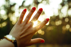 Hand and sun rays Stock Image