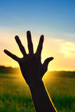 Hand On Sunset Background Stock Image