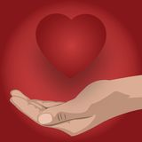 Hand supports a heart Royalty Free Stock Image