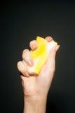 hand svampen Royaltyfri Foto