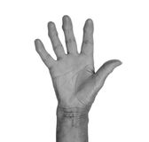 Hand symbol, saying five, saying hello or saying stop Royalty Free Stock Photography