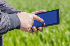 Hand with tablet PC on cereal field in summer Royalty Free Stock Photography