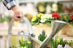 Hand takes the watering can with flowers in the background Royalty Free Stock Image
