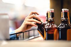 Hand taking bottle of beer from shelf in alcohol and liquor store. Customer buying cider or supermarket staff filling and stocking royalty free stock photos