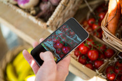 Hand taking a photo of cherry tomatoes in display in organic section Royalty Free Stock Photography