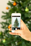 Hand taking photo of Christmas tree by smartphone Royalty Free Stock Images