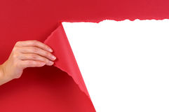 Hand tearing red paper background revealing white copy space Stock Photo