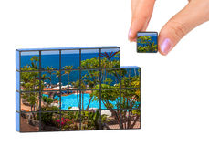 Hand and Tenerife Canary (my photo) puzzle Royalty Free Stock Image