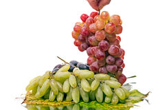 Hand and three types of grapes Stock Photography