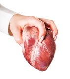 Hand throws heart Stock Photography