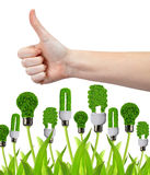 Hand with thumb up and eco energy bulbs Royalty Free Stock Image