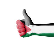 Hand with thumb up, Palestine  flag painted Royalty Free Stock Photography