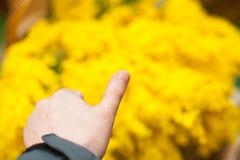 Hand thumb up on yellow Stock Image