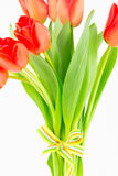 Hand-tied bouquet of orange tulips Royalty Free Stock Photo