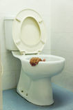 Hand in toilet. Somebody hand trap in toilet Royalty Free Stock Image