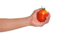 Hand with tomato Stock Image