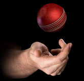 Hand Tossing Cricket Ball. A male hand tossing a cricket ball up in the air on an  dark background - 3D render Stock Photos