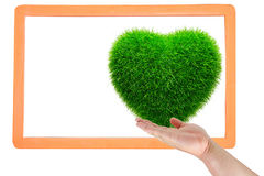 Hand touch grass heart Stock Images