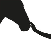 Hand touches the horse's nose. Black and white royalty free illustration