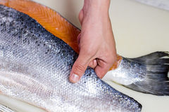 Hand touches raw fish meat. Big piece of raw fish. Fresh salmon for tasty soup. Chef knows simplest recipe Stock Photos