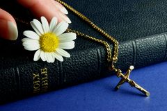 Hand touching Bible. With gold crucifix and flower Royalty Free Stock Photos