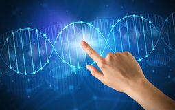 Hand touching DNA molecule. Female hand touching DNA molecule with blue background royalty free stock photos