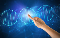 Hand touching DNA molecule Royalty Free Stock Photography