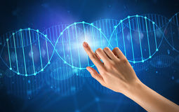 Hand touching DNA molecule. Female hand touching DNA molecule with blue background royalty free stock photo