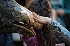Hand touching fortune boar in Florence. Detail of Hand touching good luck copper pig statue in Florence Stock Photo