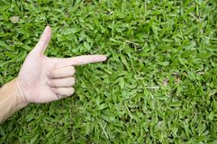 Hand touching green grass field Royalty Free Stock Images