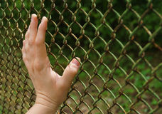 Hand touching a metal grille Stock Photography