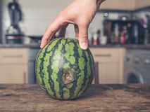Hand touching rotten melon in kitchen Royalty Free Stock Image
