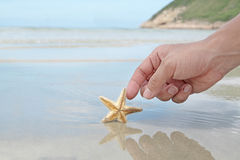 Hand touching the starfish Stock Photo
