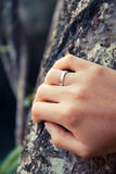 Hand touching tree Royalty Free Stock Image