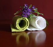 Hand towel Royalty Free Stock Image