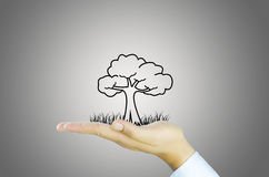 Hand with tree decrease global warming Royalty Free Stock Image