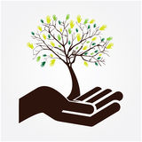 Hand tree Royalty Free Stock Images