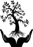 Hand tree silhouette Stock Image