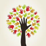 Hand a tree2 Royalty Free Stock Photo