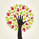 Hand a tree2 Royalty Free Stock Photo