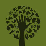 Hand a tree3 Royalty Free Stock Photography