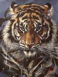 Hand-trekkend portret van een tijger met blauwe geïsoleerde ogen op blauwe achtergrond stock afbeelding
