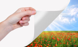 Hand turns a sheet of paper. In the background spring landscape Stock Photos