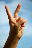 Hand two fingers. A child holds up two fingers to indicate the number two, or peace sign, or V for victory royalty free stock photo
