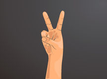Hand with two fingers up in the peace or victory symbol. Also the sign for the letter V in sign language.Man or woman hand. Stock Photography