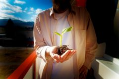Hand und Anlage Umwelt-Konzept Bewirken Sie seitlichen 50mm Nikkor Lizenzfreie Stockbilder
