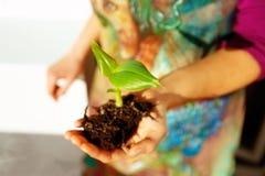 Hand und Anlage Umwelt-Konzept Bewirken Sie seitlichen 50mm Nikkor Stockfotos
