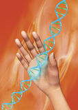 Hand und DNA Stockfotografie