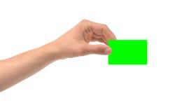 Hand- und Green Card-freier Raum lokalisiert auf Weiß Lizenzfreie Stockbilder