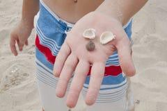 Hand und Shell Lizenzfreie Stockbilder
